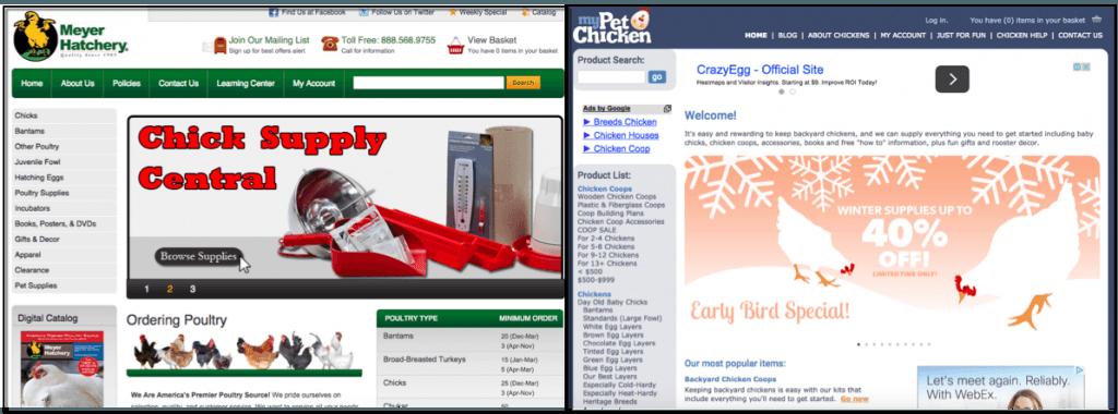 where to buy chicks online screenshot