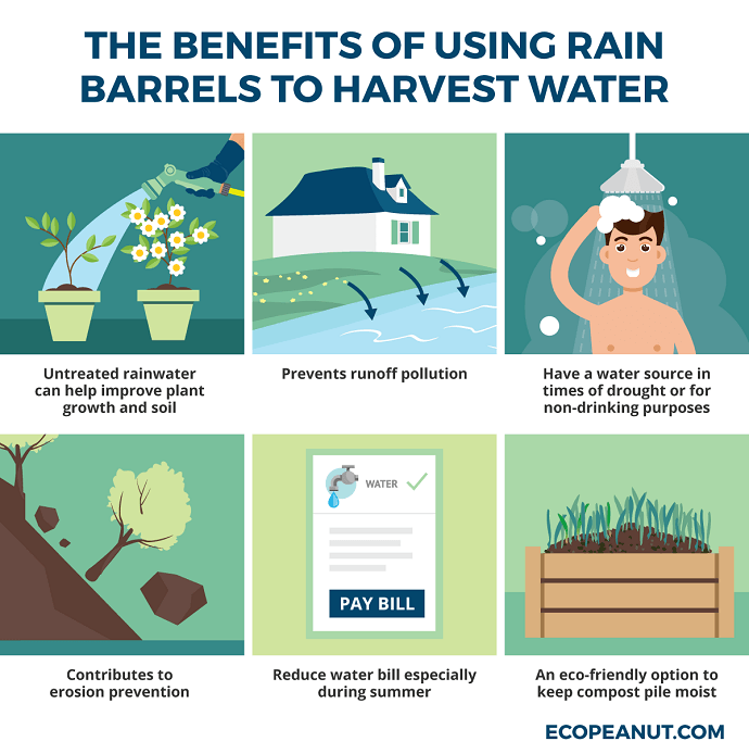 benefits of using rain barrels to harvest water graphic