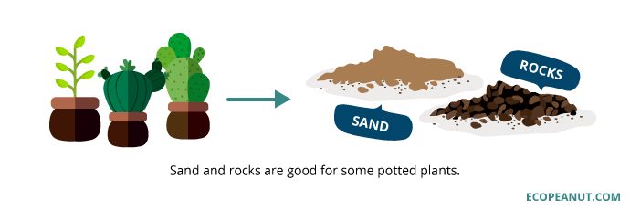 sand and rocks are good fro some potted plants graphic