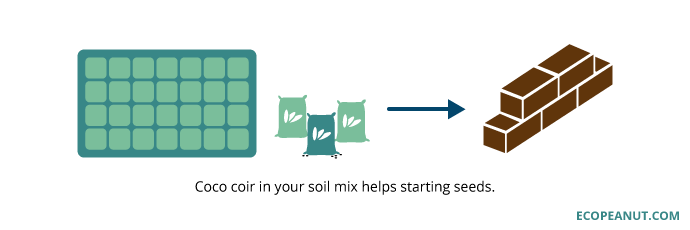 coco coir in soil helps starting seeds graphic