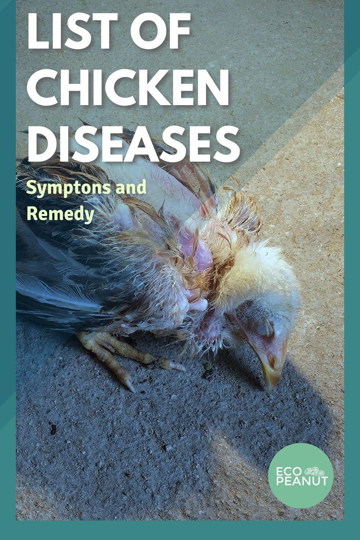 List Of Chicken Diseases