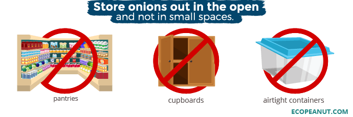 Where not to store onions: Pantries, cupboards, airtight containers