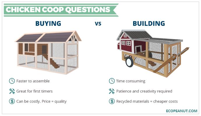 buying versus building a chicken coop