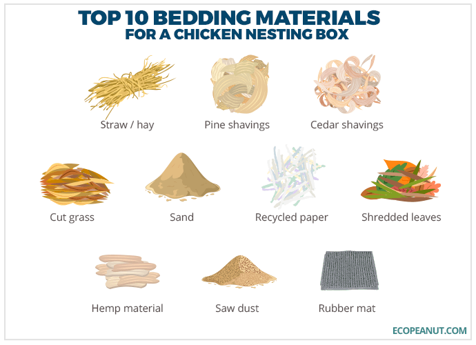 top 10 bedding materials for chicken nesting box