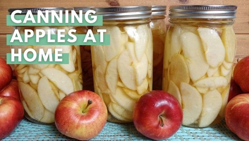 Canned Apple Recipe
