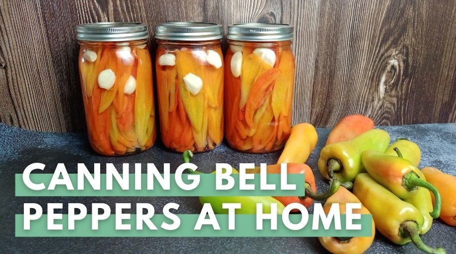 Canned Bell Peppers