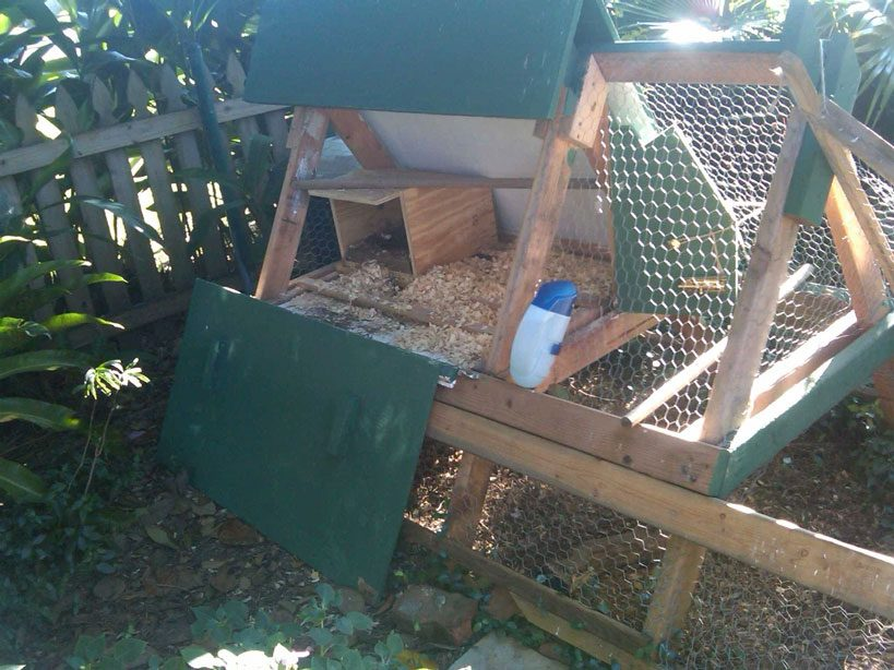 A-Frame Chicken Coop Plans Single Side Door