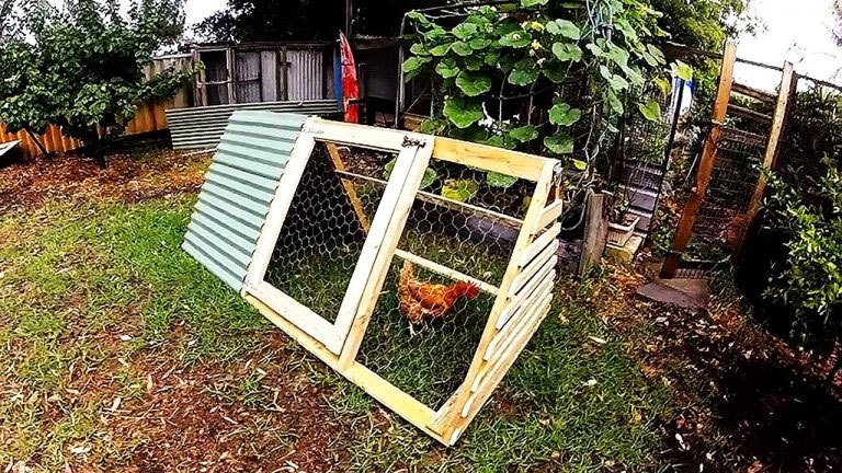 A-Frame Chicken Coop Plans Basic and Open