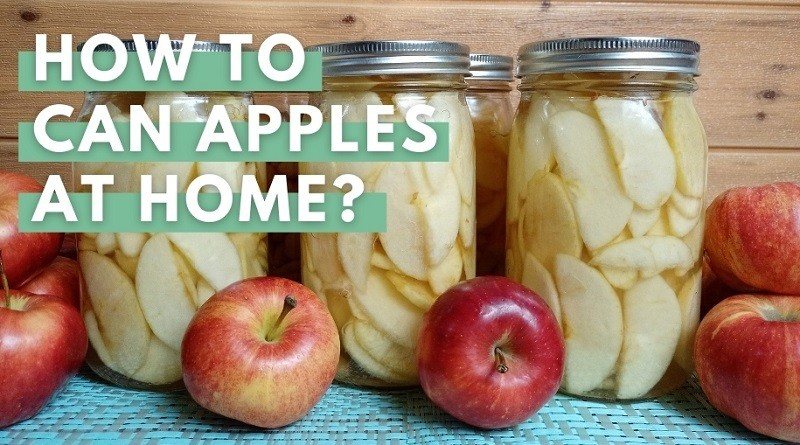 Canning Apples