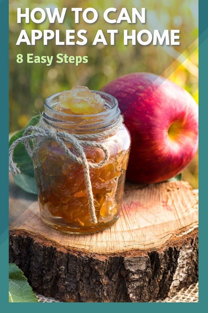 How To Can Apples At Home in 8 Easy Steps