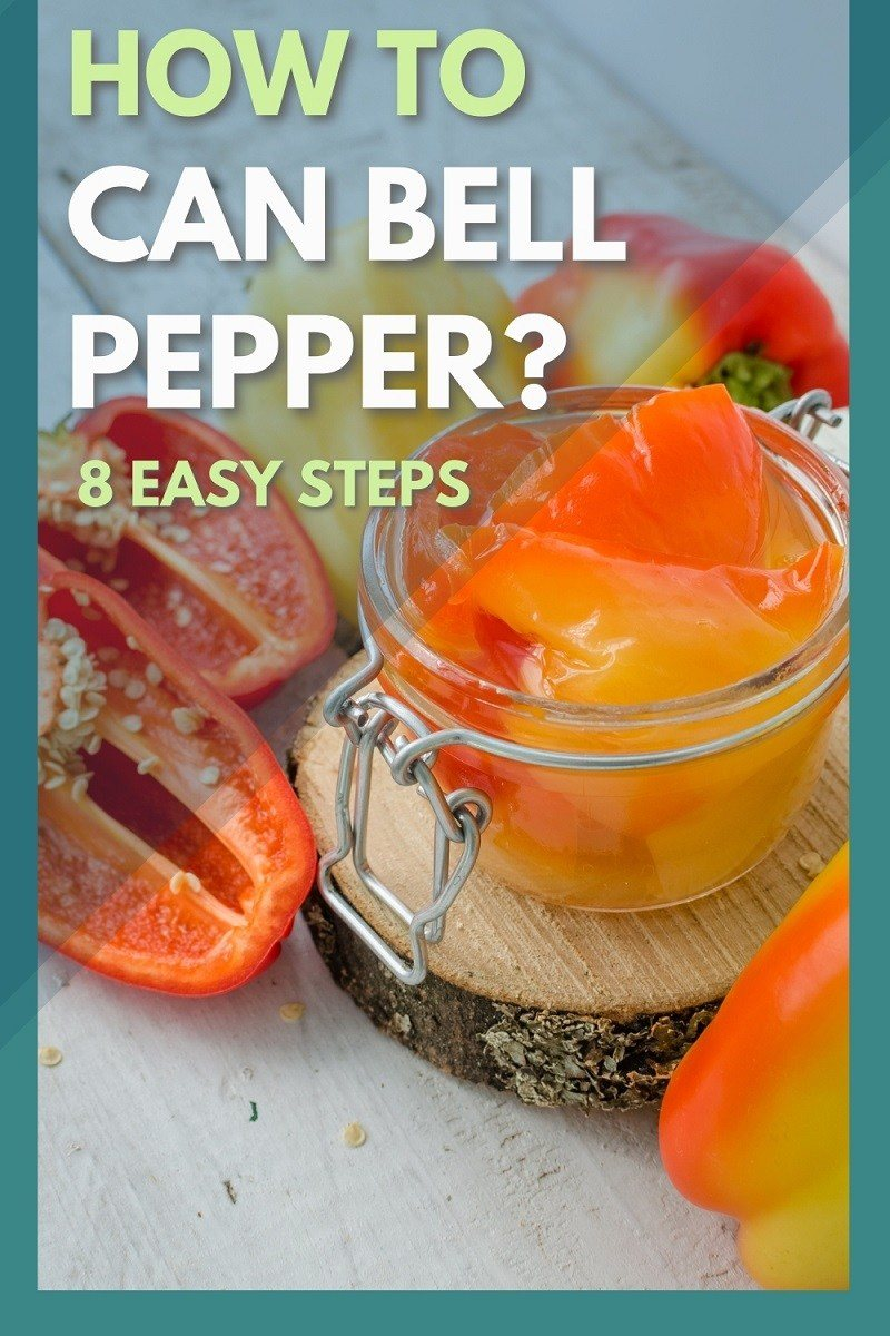 how to can bell pepper in 8 easy steps