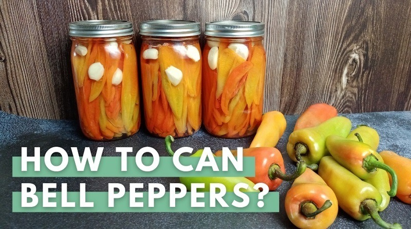 Canning Bell Peppers