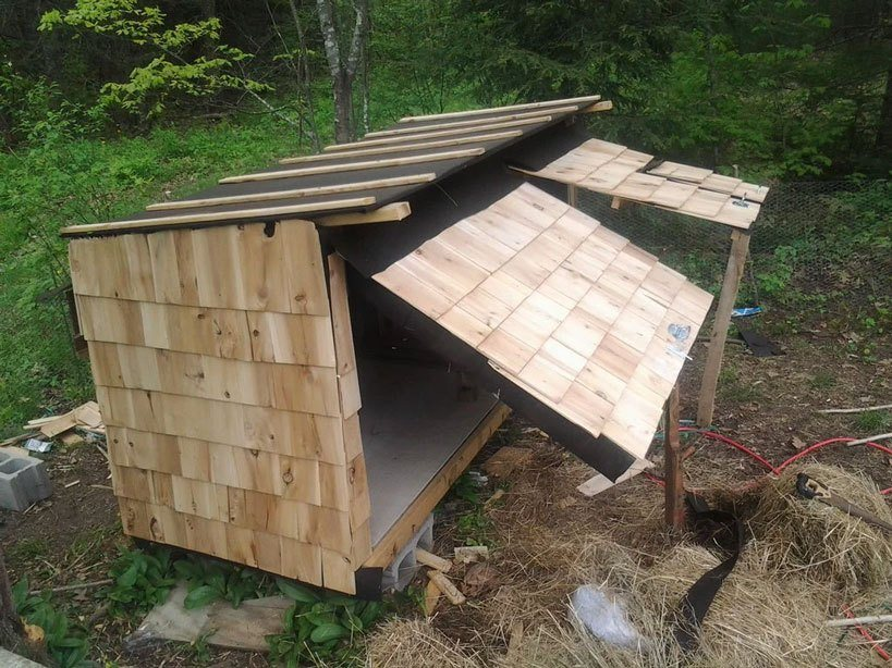 Pallet Coop Ideas Basic Waterproof Shed