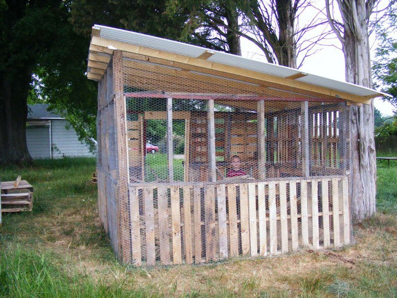 Pallet Coop Ideas Chicken Shack
