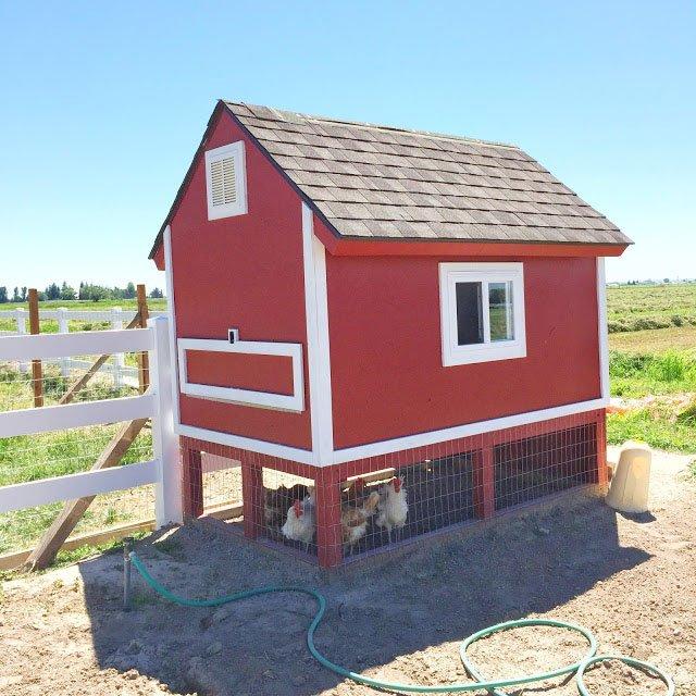 Pallet Coop Ideas Barn Style