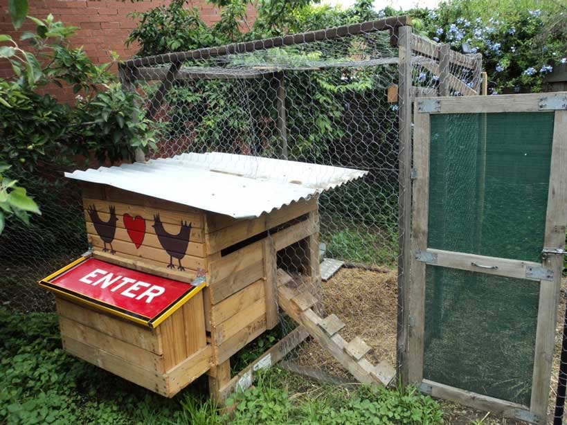 Pallet Coop Ideas Easy In Easy Out