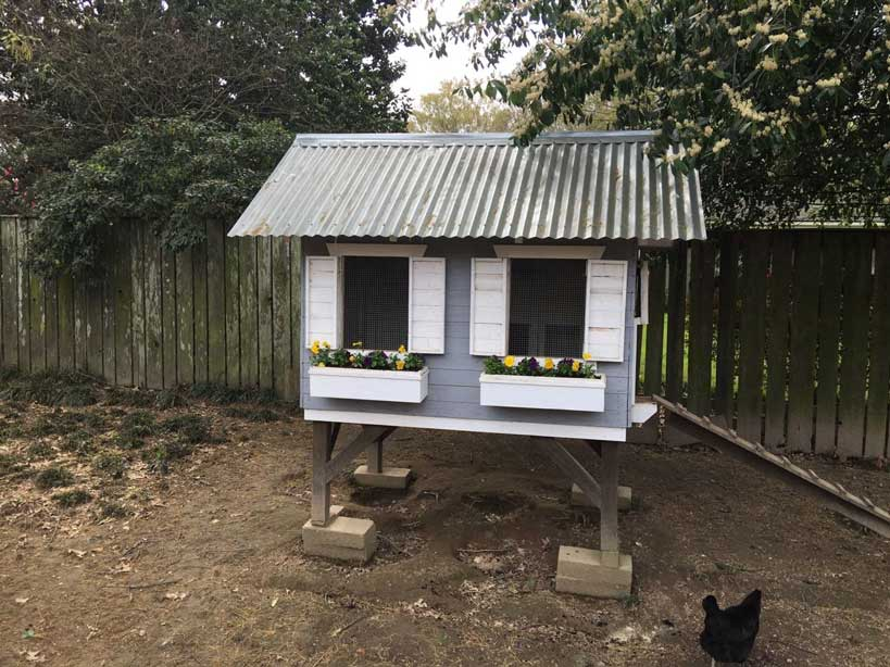 Pallet Coop Ideas Quaint Cottage Coop