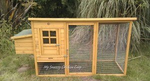 Predator Proof Your Chicken Coop Elevate the Coop