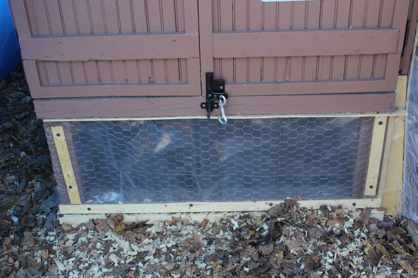 Predator Proof Your Chicken Coop Double Lock the Coop