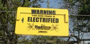 Predator Proof Your Chicken Coop Electric Fence