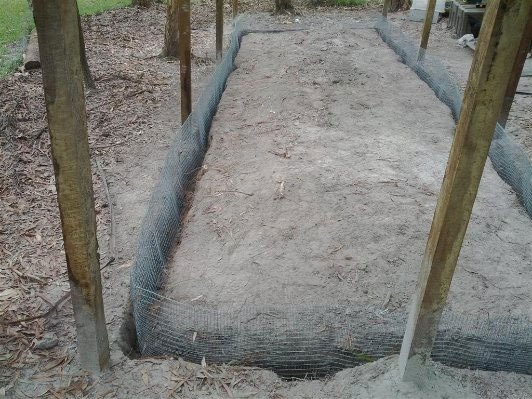 Predator Proof Your Chicken Coop Build a Mesh Trench