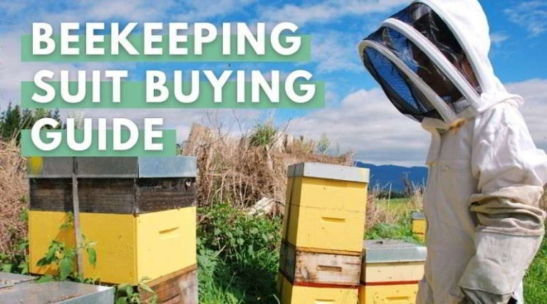 Beekeeping Suit Buying Guide: How to Choose the Best Beekeeping Suit For You