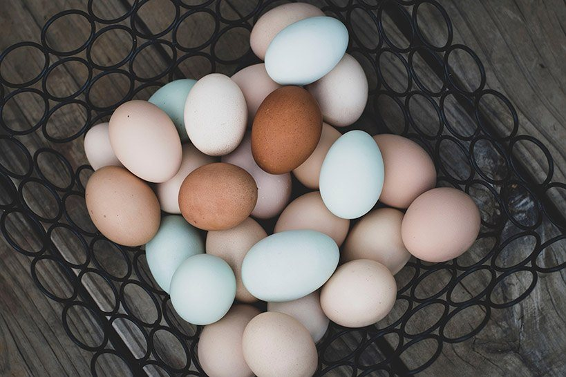 Blue chicken eggs and other colors in a metal basket