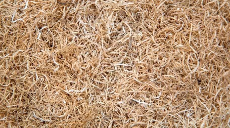 a bunch on dried hemp