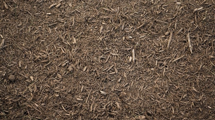 top view of mulch or wood chips