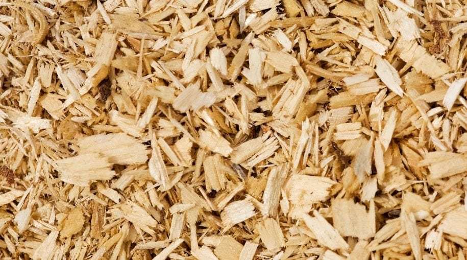 a zoomed in shot of pine shavings