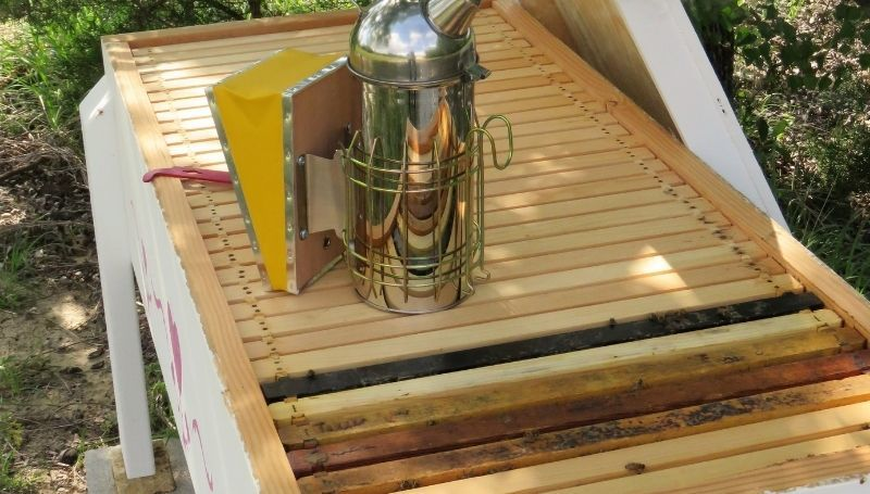 one wooden long/vertical hive with a bee extractor on top