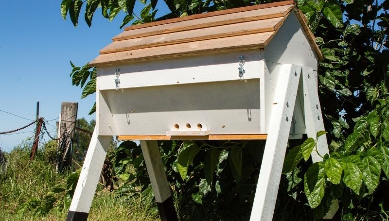 one white wooden Top Bar hive