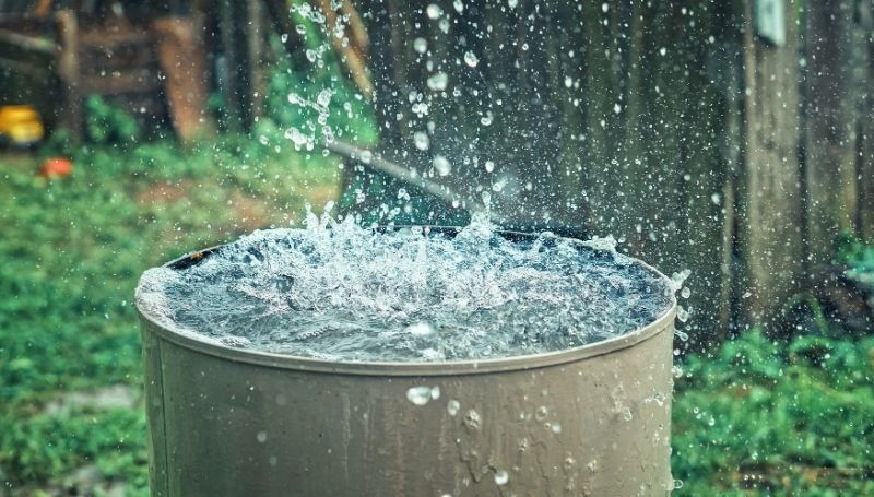 one fully-opened rain barrel filling up