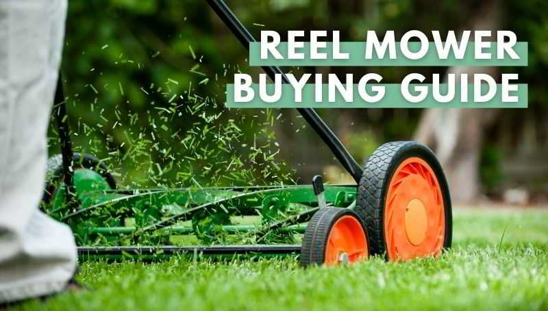 Reel Mower Buying Guide