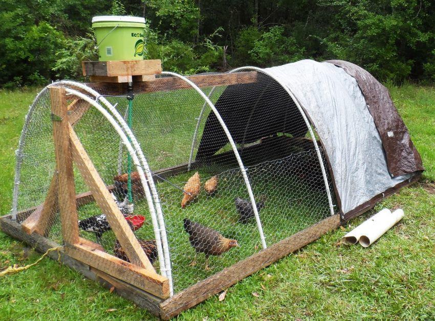 Chicken Wire Hoop