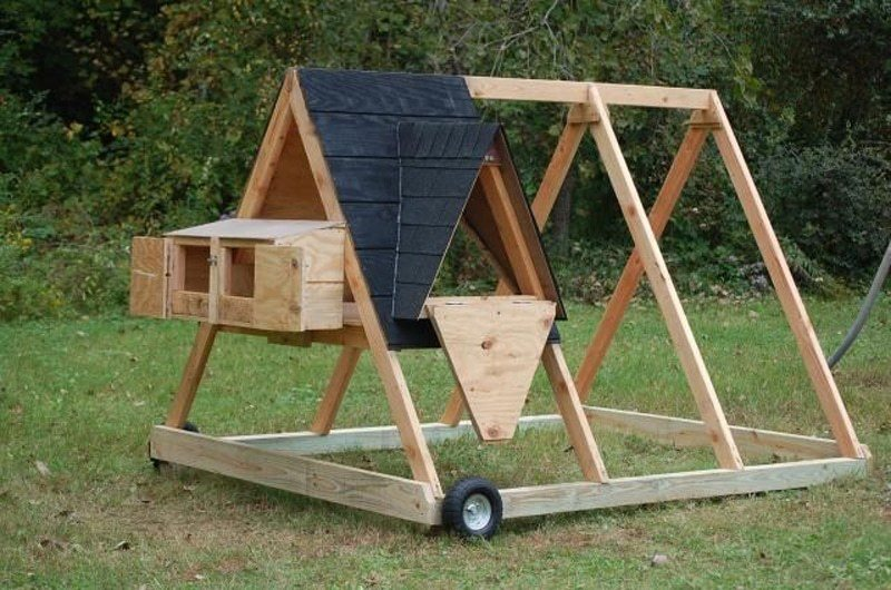 the a-frame chicken coop