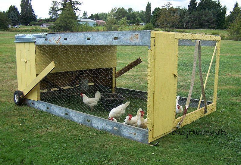 Chicken Tractor Plans With Bottom Run