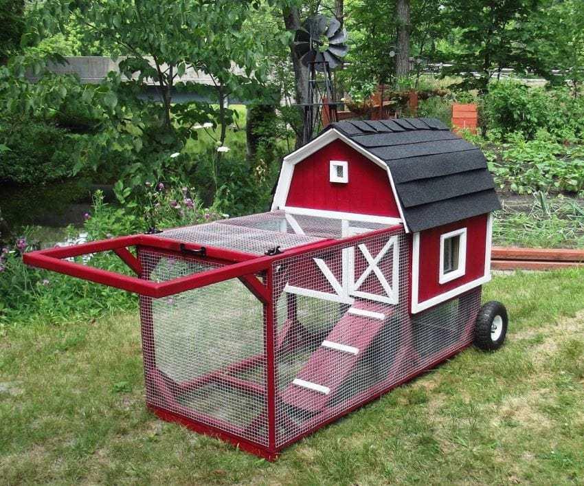 red chicken tractor