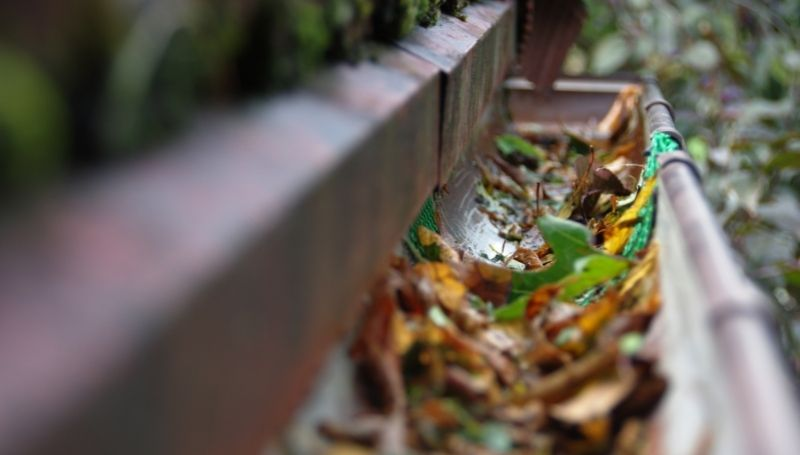 a half-round gutter with leaves in it