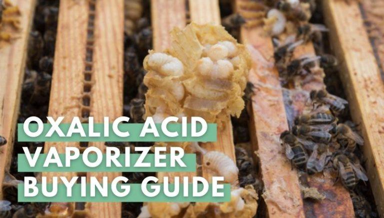 Oxalic Acid Vaporizer Buying Guide