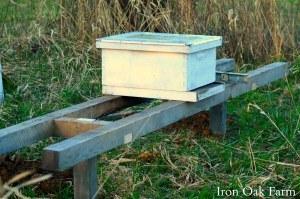 Iron Oak Farm Multiple Beehive Stand