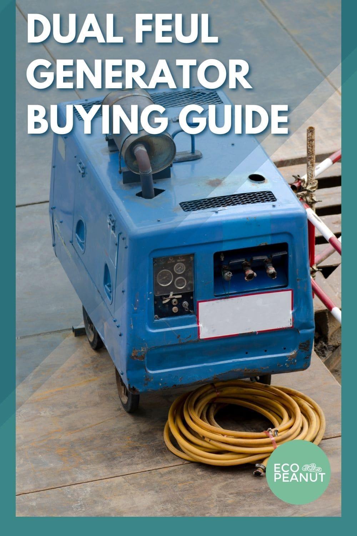 dual feul generator