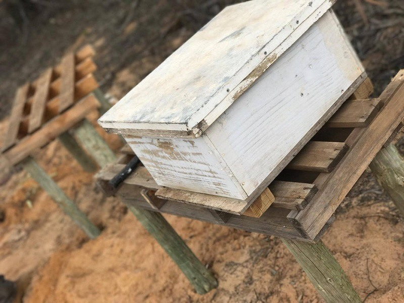 Pallet and Post Beehive Stand