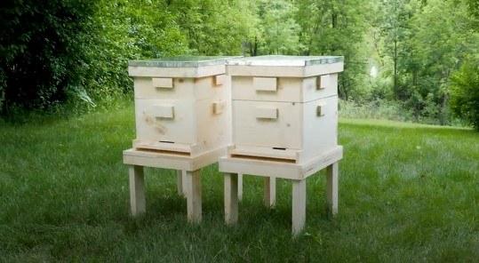 Pro-level Beehive