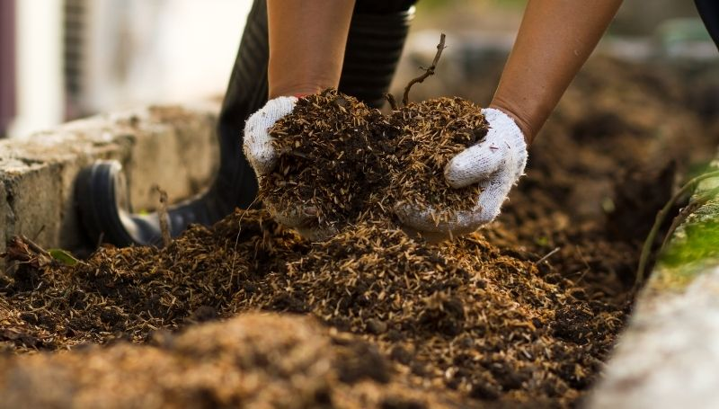 adding browns to speed up compost