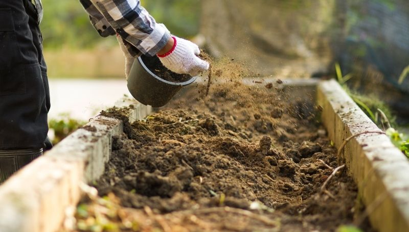 carefully sprinkling soil on a compost bed