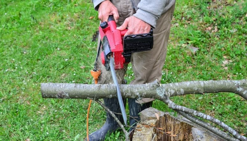 a small, red electric chainsaw cutting a trunk with approximately 6-inch diameter