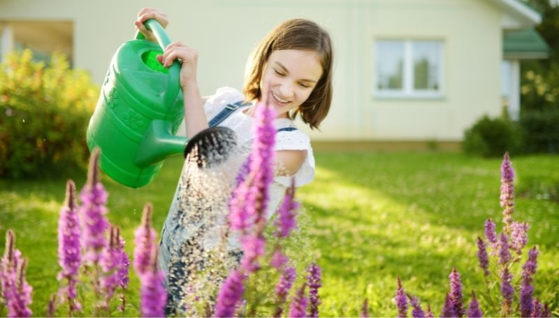 hire a plant sitter to water your plants when you're away