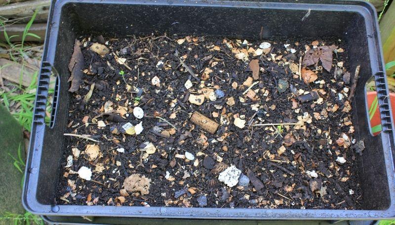compost pile in large rectangular plastic bin
