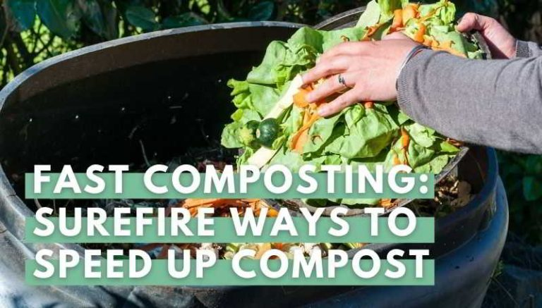 Fast Composting: Surefire Ways to Speed Up Compost